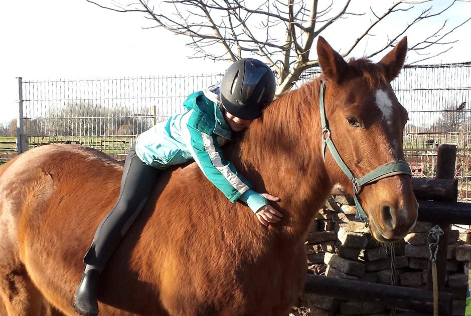 Pferd-Antonia
