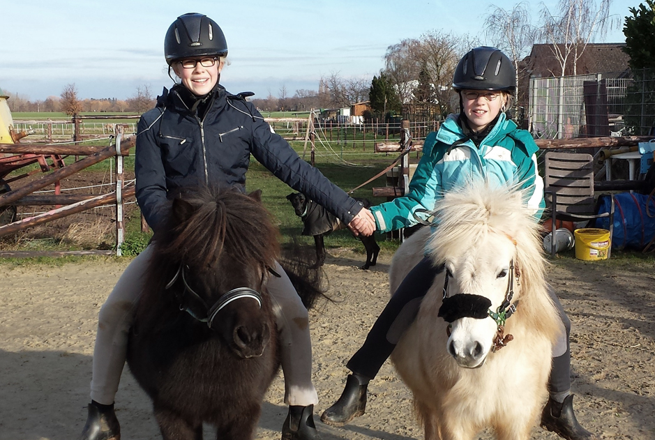 Pferde Feli-und-Falla